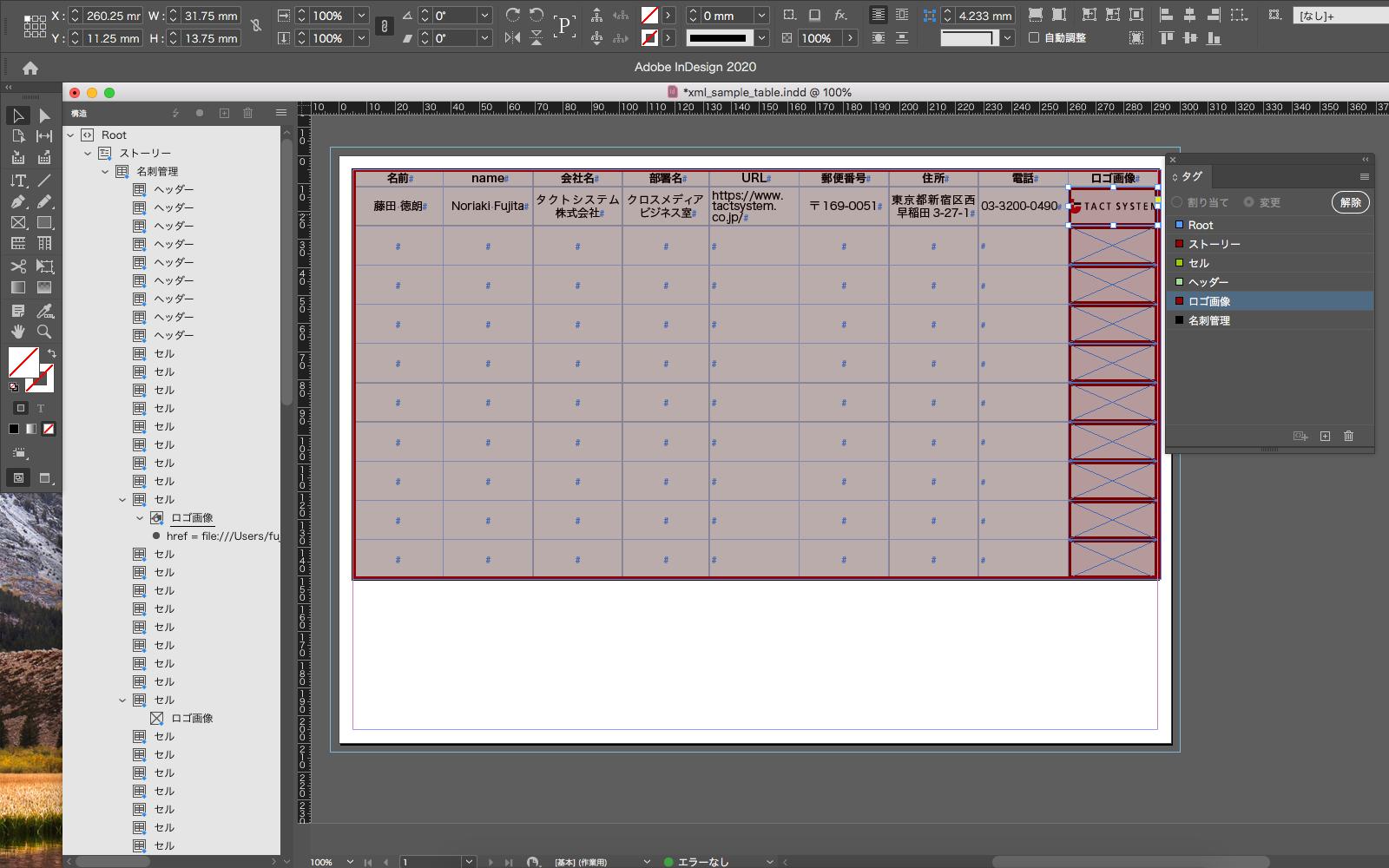 表組に XML ファイルが配置される